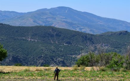 Exploring climate change through proverbs in Sierra Nevada (Spain)